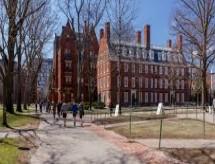 Só em doações, Harvard recebeu o orçamento da USP