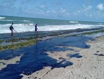 Capes destina R$ 1,3 milhão para projetos de combate ao derramamento de óleo nas praias brasileiras
