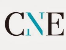 Súmula de Pareceres/ CNE- mês de abril 2020