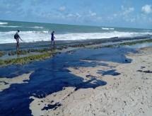 Science publica estudos sobre óleo em praias brasileiras apoiados pela Capes
