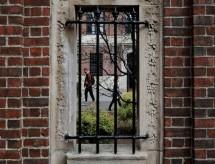 EUA bloqueiam entrada de estudantes estrangeiros que teriam apenas aulas remotas