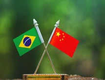 Brasil e China celebram parceria científica inédita