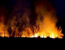 Governo lança cartilha alunos da Amazônia sobre queimadas