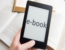 MEC divulga e-book com principais ações do Ministério no último ano